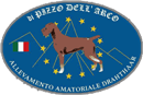 Deutsch Drahthaar – Pizzo dell'Arco –